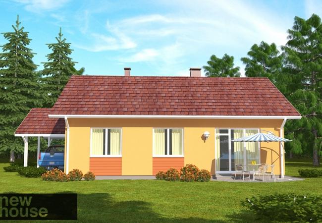 Каталог проектов домов - Дома для одной семьи - VIOLA